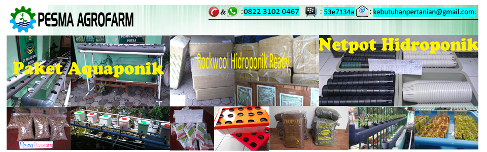 Jual Rockwool Hidroponik | Jual Bibit Tanaman | Jual Nutrisi Hidroponik | Jual Netpot | Jual Plasik UV