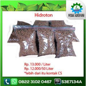 hidroton